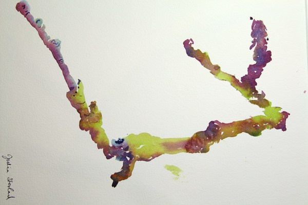 ./newwatercolours/10649Branches with lichen_wm.JPG